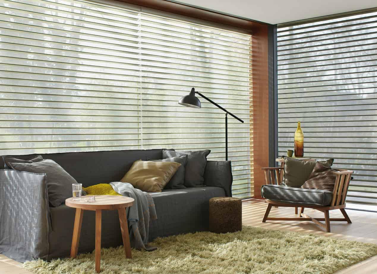 shade and savalan down window fullsizerender silhouette open horizontals sheer decor blinds